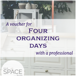 4 days with professional organizer
