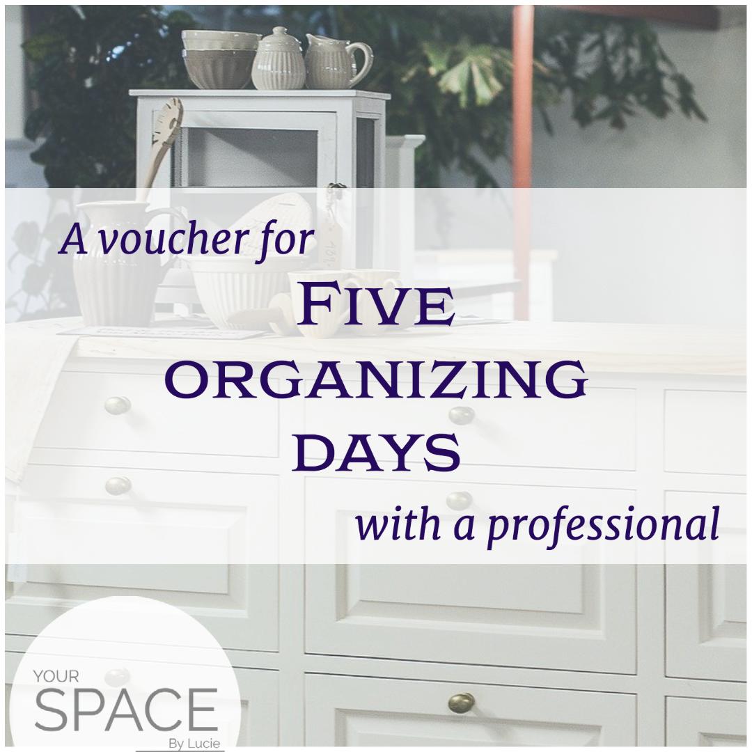 5 days with professional organizer