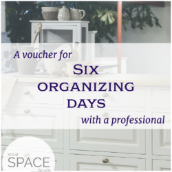 6 days with a professional organizer